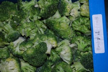 Kupić Brokuła mrożona