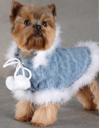 Kupić Pelerynki, płaszczyki, kurteczki dla psów i kotów. Wyjątkowa kolekcja.