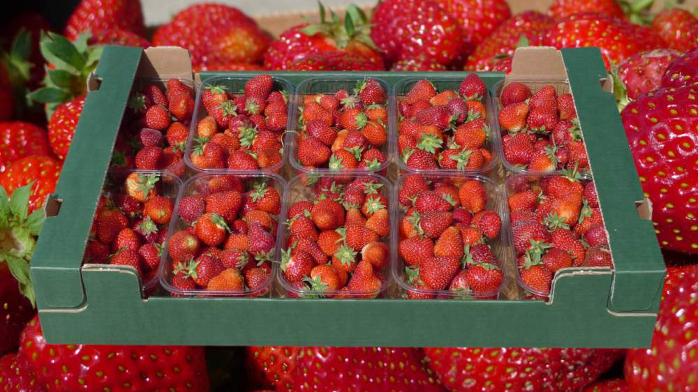 Kupić Opakowania na owoce miękkie