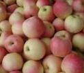 Kupić Jabłka gala