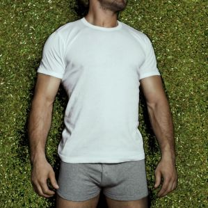 Kupić Barracuda T-shirt 2x2 (Shirt)