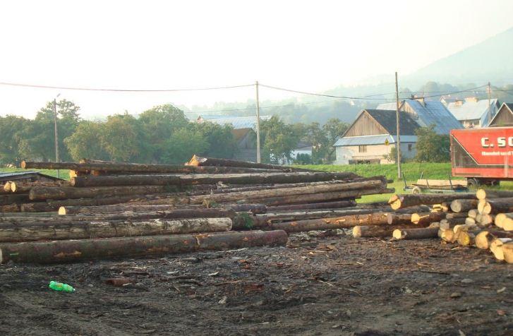 Kupić Drewno tartaczne - świerk i jodła