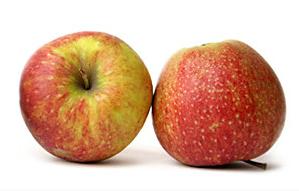 Kupić Jabłka Jonagored