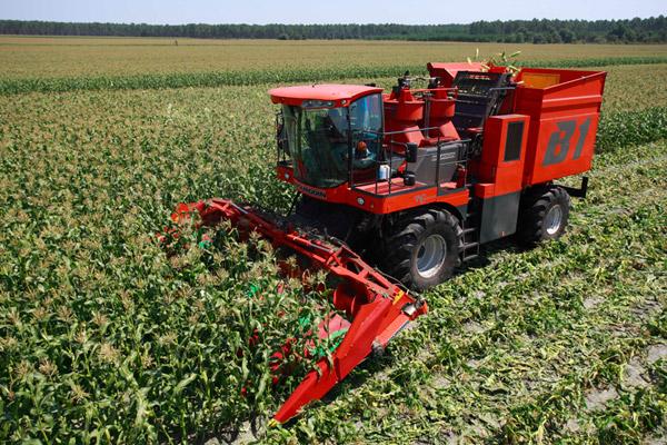 Kupić Kombajn do zbioru kolb kukurydzy B1