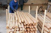 Kupić Pale drewniane.