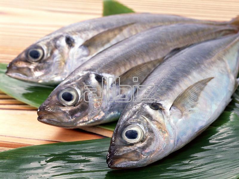 Kupić Ryby wędzone