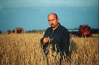 Kupić Kontraktacja kukurydzy i zbóż
