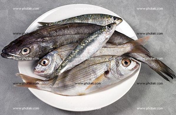 Kupić Ryby świeże i wędzone