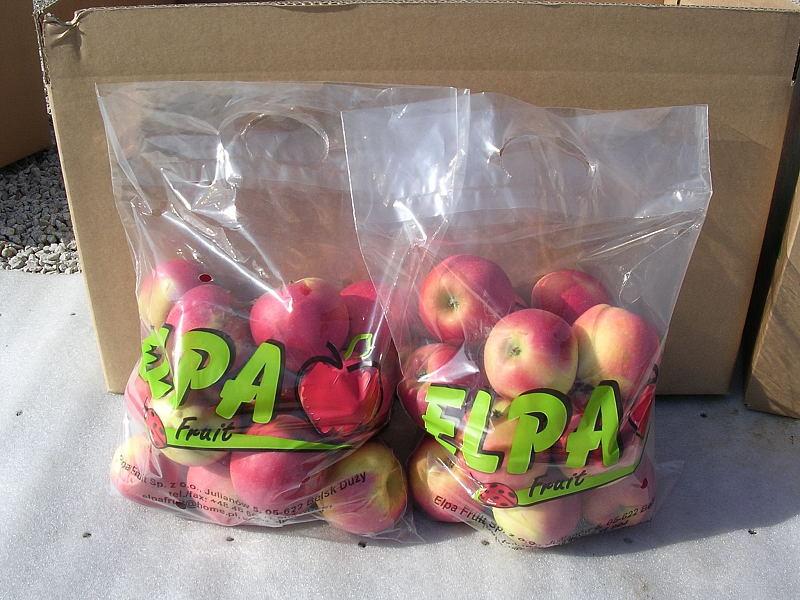 Kupić Jabłka świeże, jabłka na eksport.