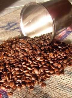 Kupić Kawa gourmet