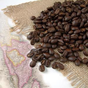 Kupić Doskonałej jakości kawa arabica