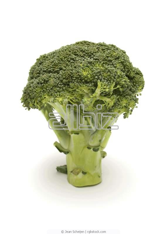 Kupić Brokuł