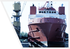 Kupić Pokrywy lukowe ładowni statków.