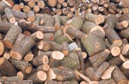 Kupić Drewno kominkowe, opałowe wysokiej jakości.