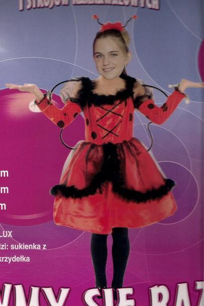 Kupię Stroje dla dzieci Biedronka Lux