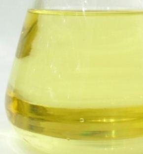 Kupić Olej rzepakowy do biopaliwa