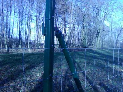 Kupić Ogrodzenie z siatki leśnej