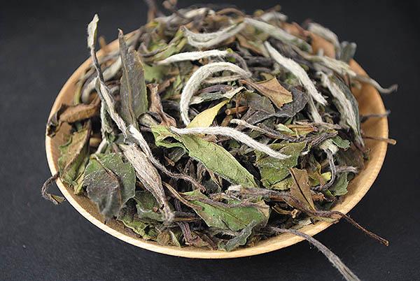 Kupić Herbata White Pai Mu Tan
