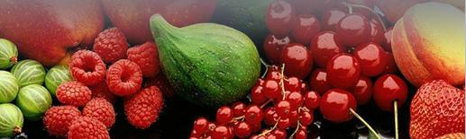 Kupić Świeże owoce