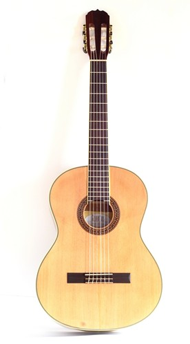 Kupić Gitara Gladius Pannonia SC310S