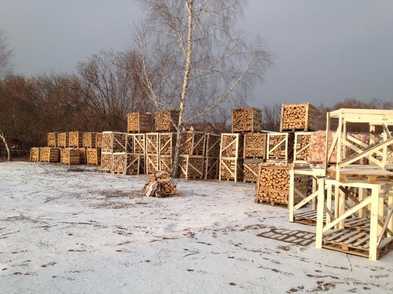 Kupić Drewno Opałowe Kominkowe Dąb , Buk , Brzoza