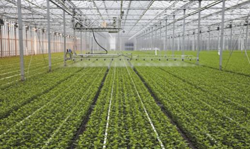 Kupić Urządzenia dla uprawy ziemi