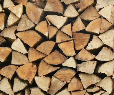 Kupić Drewno suche.