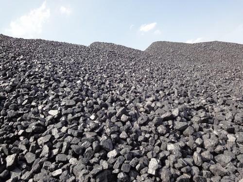 Kupić Węgli kamienne i brunatne