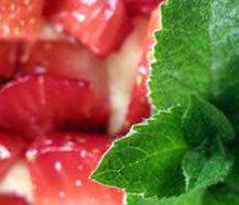 Kupić Sadzonki truskawek Dukat