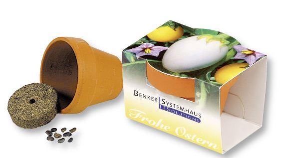 Kupić Pudełko jajek z roślinkami