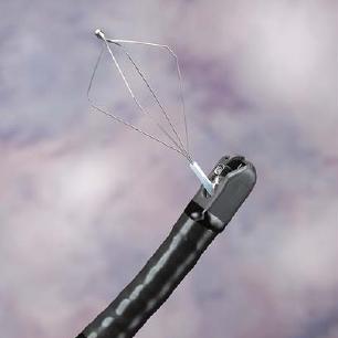 Kupić Duodenoskop ED-250XL8