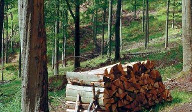 Kupić Kotły na drewno
