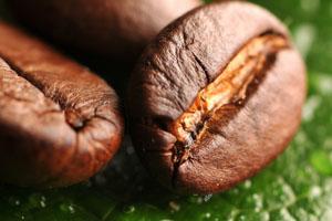 Kupić Kawa naturalna