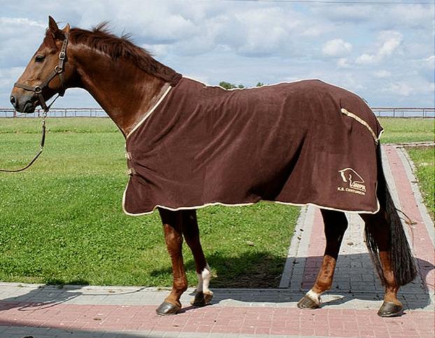 Kupić Narzuty dla koni. Derka polarowa, osuszająca