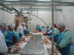 Kupić Mięso wieprzowe - elementy. Polędwiczki, żeberka, biodrówka, boczek
