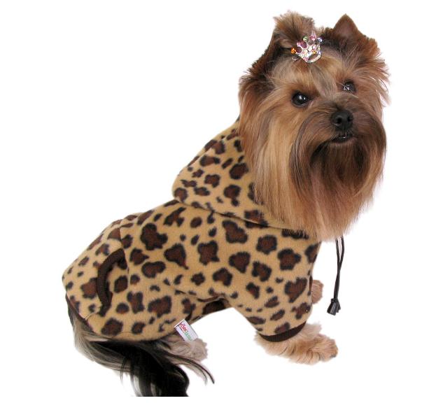 Kupić Ubranka dla psów