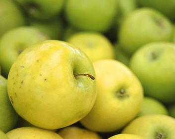 Kupić Jabłki