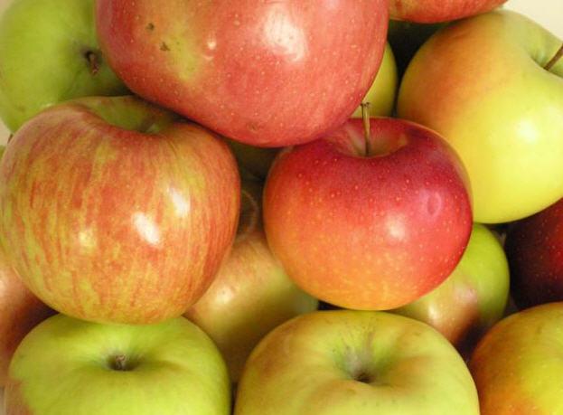 Kupić Jabłki i inne owoce
