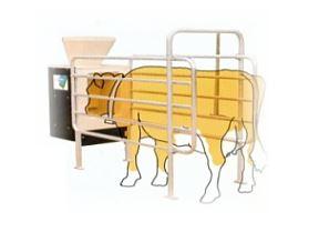 Kupić Systemy paszowe; zautomatyzowany, sterowany komputerowo system zadawania pasz dla bydła