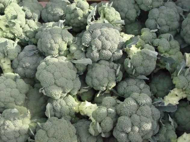 Kupić Świeże brokuły.