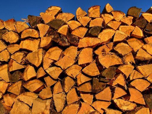 Kupić Drewno grabowe twarde