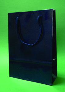 Navy laminated bag 24x9x32 cm