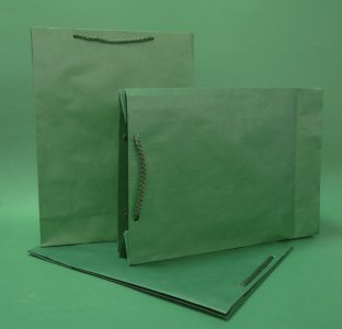 Kupić Torba papierowa eco prestige 24x9x32 cm zielona
