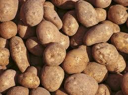 Kupić Ziemniaki sadzeniaki.