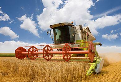 Kupić Rolnictwo traktujemy priorytetowo, jako tę branżę, na której skupiamy się już od 20 lat.