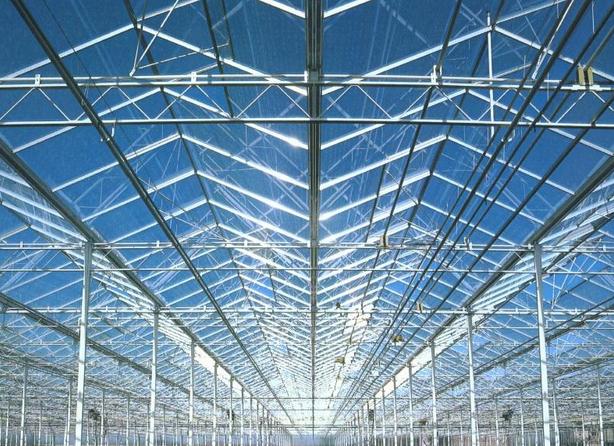 Kupić Obiekty szklarniowe Venlo i inne szklane konstrukcje