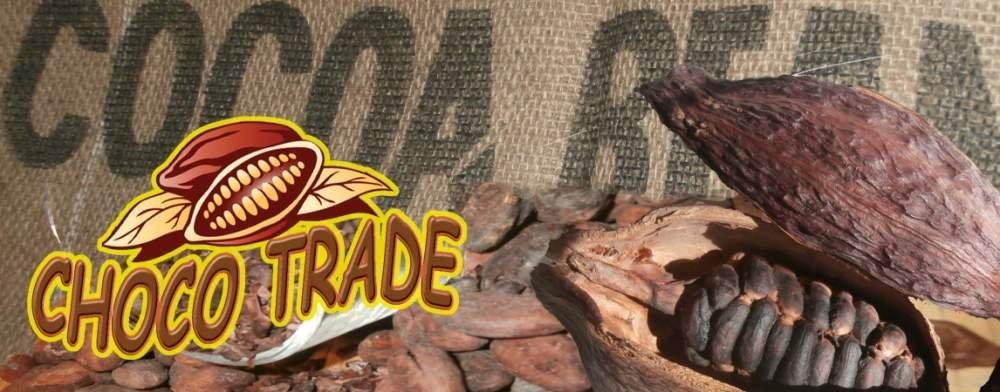 Kupić Proszek kakaowy naturalny 10-12%, cocoa powder