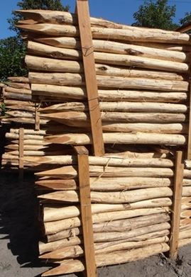 Oferujemy pale akacjowe korowane jednostronnie zaostrzone w zakresie średnic: Ø10/12 cm x 200 cm Ø10/12 cm x 250 cm