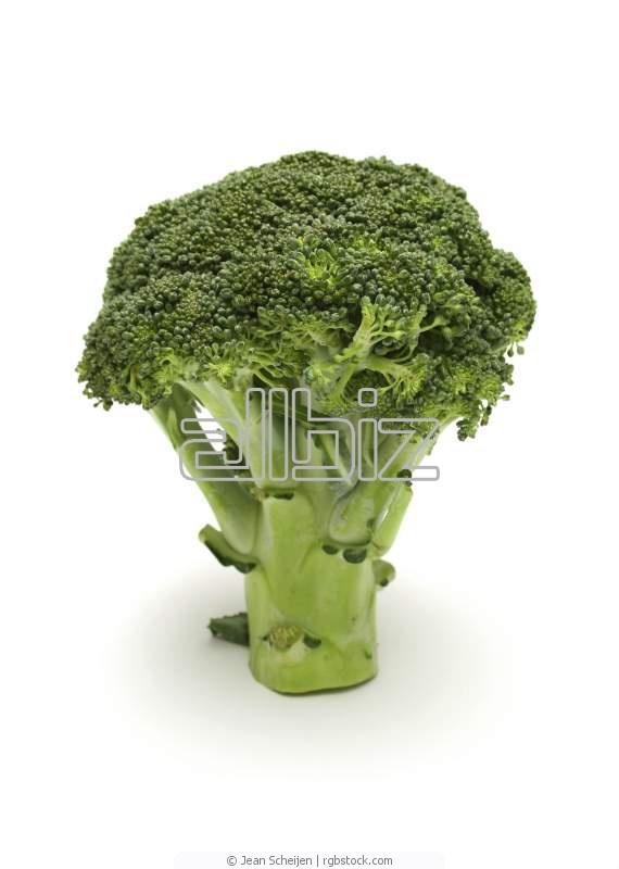 Kupić Brokuły mrożone