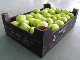 Kupić Opakowania kartonowe do owoców i warzyw